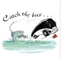catch-the-bus