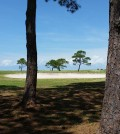The Isle Dauphine Golf Course recently reopened on the Alabama Gulf Coast.